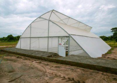 Greenhouse (4)